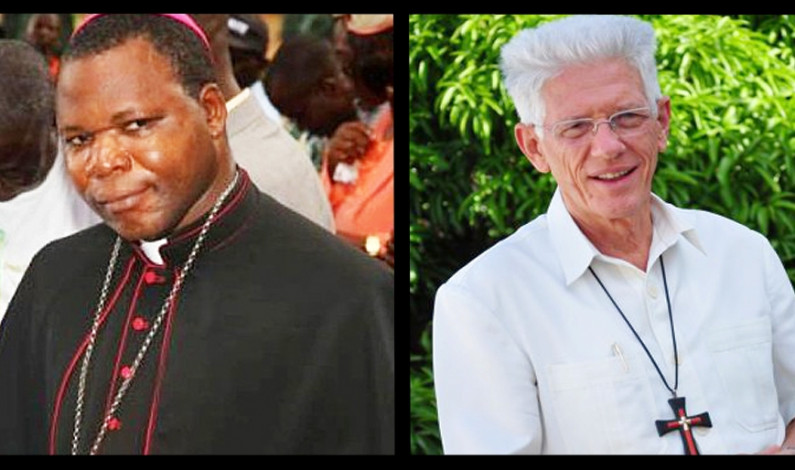 Two Spiritans named cardinals by Pope Francis