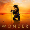 'Wonder Woman' exceeds expectations, falls short of wonderful
