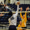 Volleyball has good showing at Duquesne Invitational
