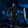 <em>Black Panther</em> displays excellence in action, narrative