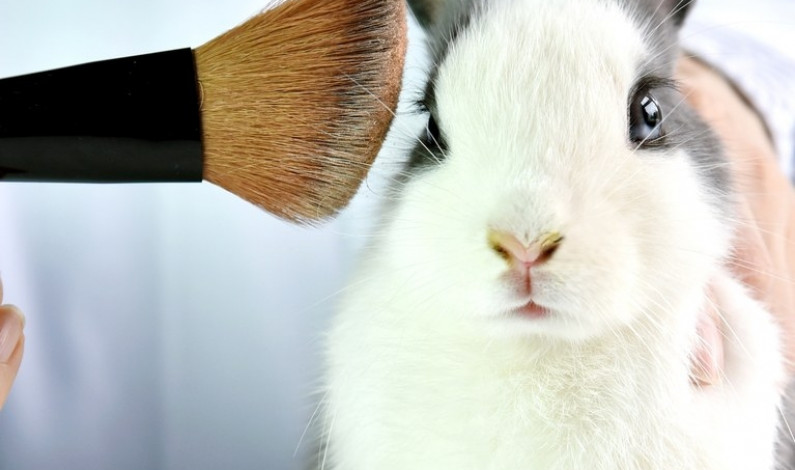California making strides toward cruelty-free cosmetics
