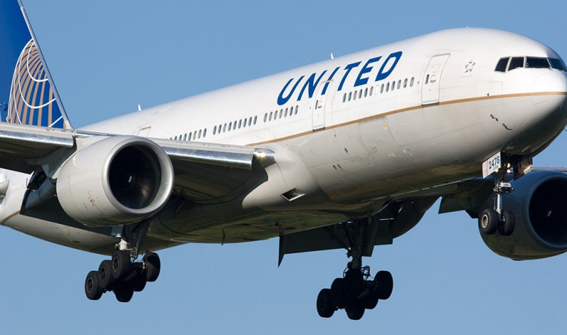 Dog killed on United Airlines flight sparks outcry