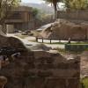 <em>Insurgency: Sandstorm</em> release pushed back for bug fixes