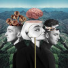 Clean Bandit&#8217;s <em>What is Love?</em> explores titular theme in depth