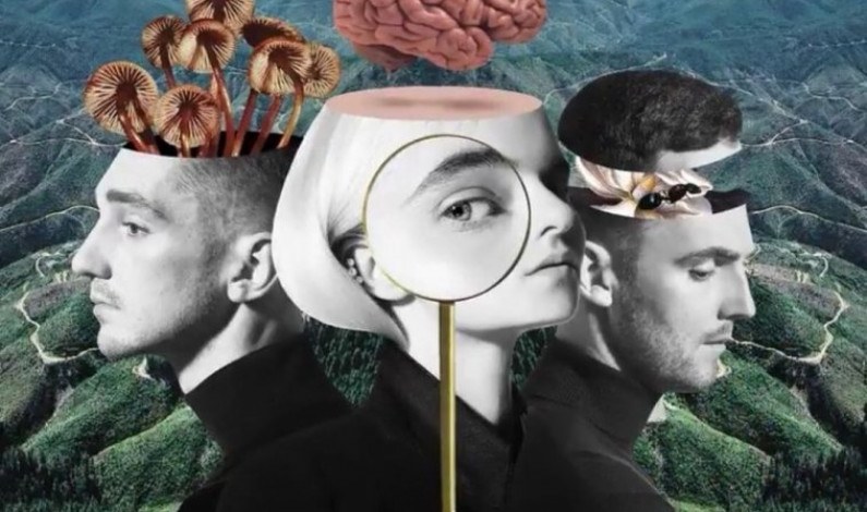 Clean Bandit's <em>What is Love?</em> explores titular theme in depth