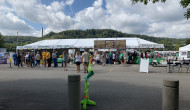 Pittsburgh Irish Festival went off without hitch