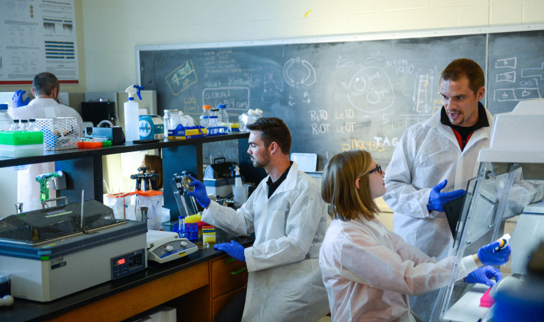Gene editing technologies promote a terrifying future