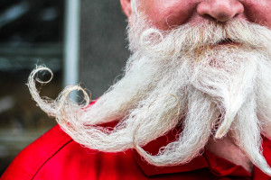 Features - Beardiest Beardly Beards 1 (aw)