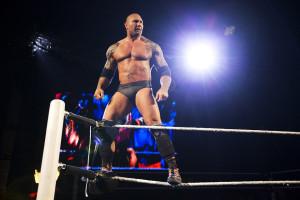 Arts - WWE 3