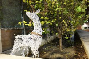 Seth Culp-Ressler | Features Editor A light-up reindeer stands outside of Des Places Hall. Campus will be fully decked out for the holidays by the end of break.