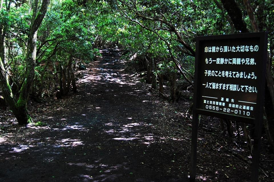opinions_Aokigahara