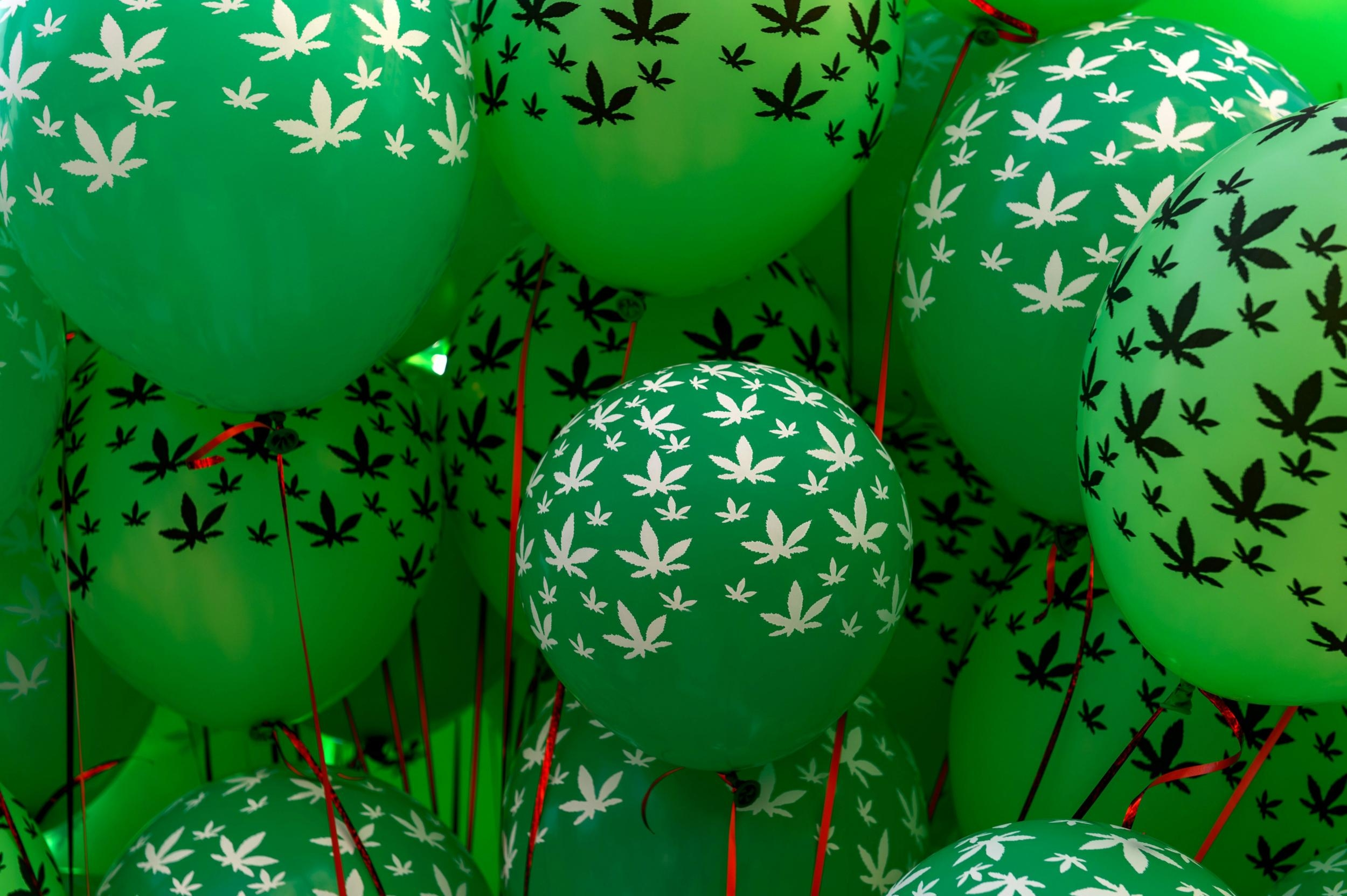 opinions_weed balloons