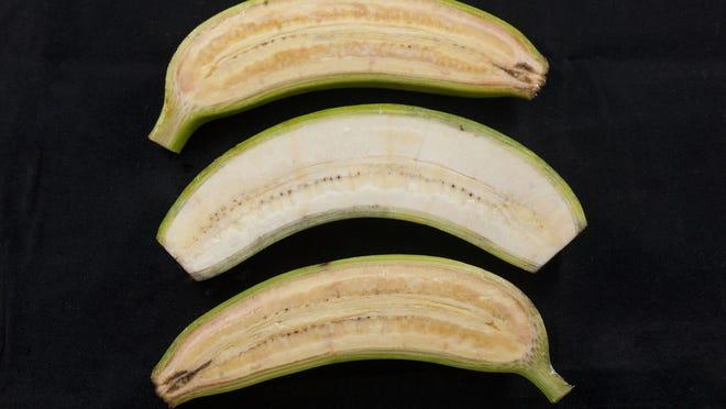 opinions_bananas2